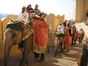 Indie-Rajasthan 2009 - Teil 3 056
