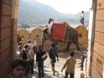 Indie-Rajasthan 2009 - Teil 3 060